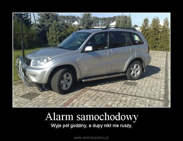 Alarm samochodowy – Wyje pół godziny, a dupy nikt nie ruszy.