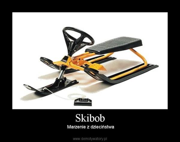 Skibob –  Marzenie z dzieciństwa