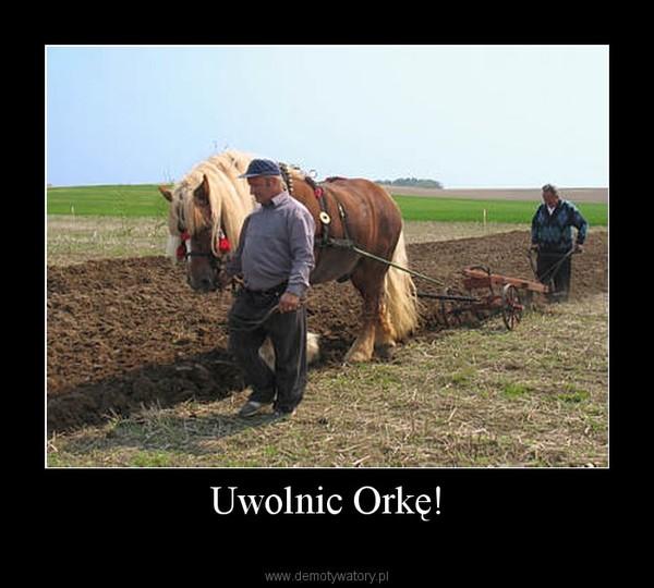 Uwolnic Orkę! –