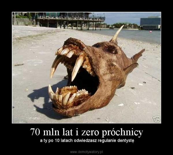 70 mln lat i zero próchnicy –  a ty po 10 latach odwiedzasz regulanie dentystę