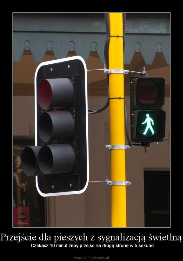 Przejście dla pieszych z sygnalizacją świetlną –  Czekasz 10 minut żeby przejść na drugą stronę w 5 sekund