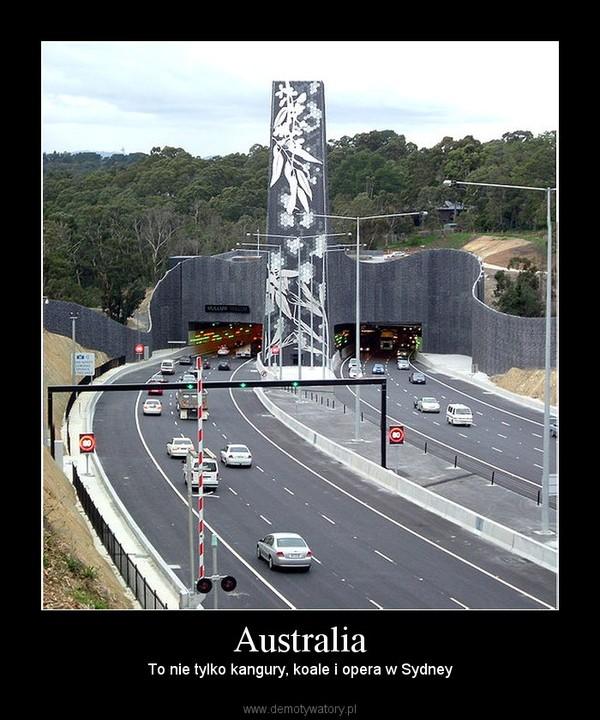 Australia – To nie tylko kangury, koale i opera w Sydney