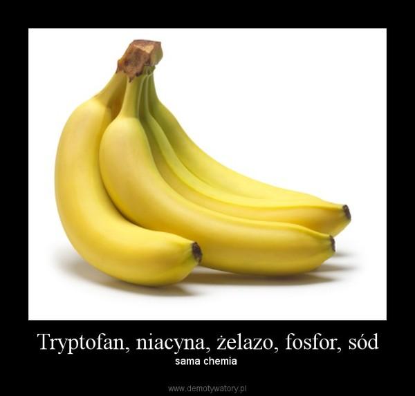 Tryptofan, niacyna, żelazo, fosfor, sód – sama chemia