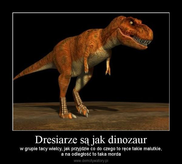Dresiarze są jak dinozaur – w grupie tacy wielcy, jak przyjdzie co do czego to ręce takie malutkie,a na odległość to taka morda