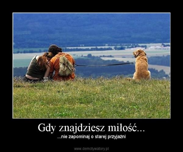 Gdy znajdziesz miłość... – ...nie zapominaj o starej przyjaźni