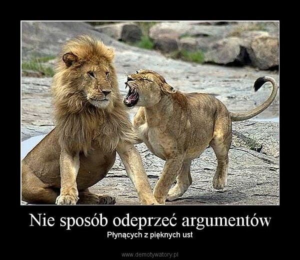 Nie sposób odeprzeć argumentów – Płynących z pięknych ust