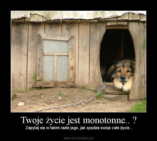 Twoje życie jest monotonne.. ?