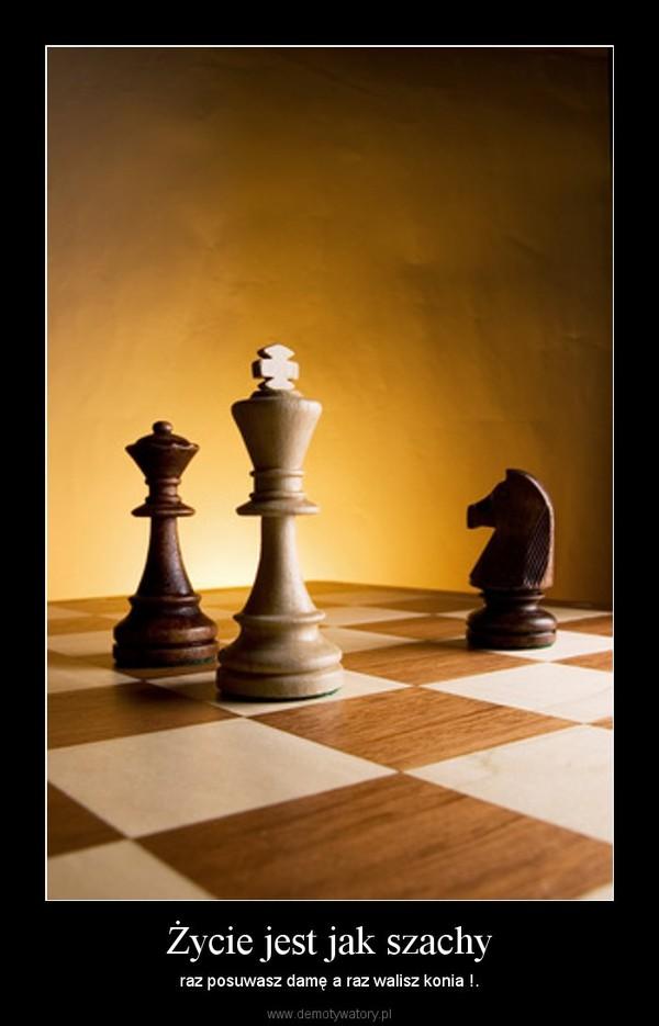 Życie jest jak szachy – raz posuwasz damę a raz walisz konia !.