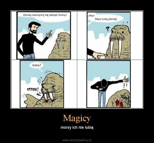 Magicy – morsy ich nie lubią
