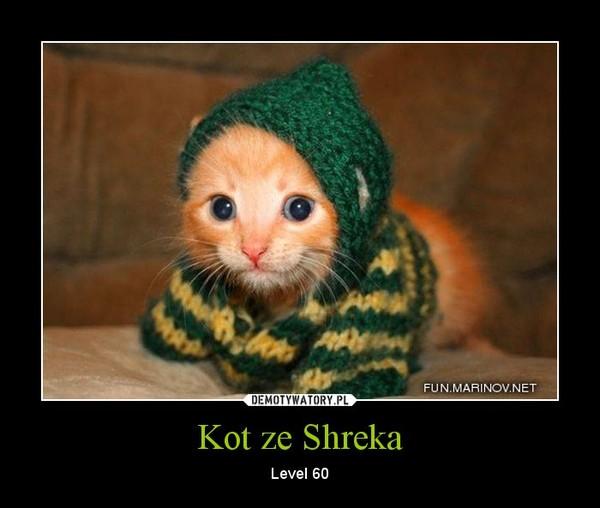 Kot ze Shreka – Level 60