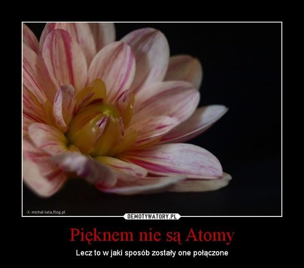 Pięknem nie są Atomy – Lecz to w jaki sposób zostały one połączone