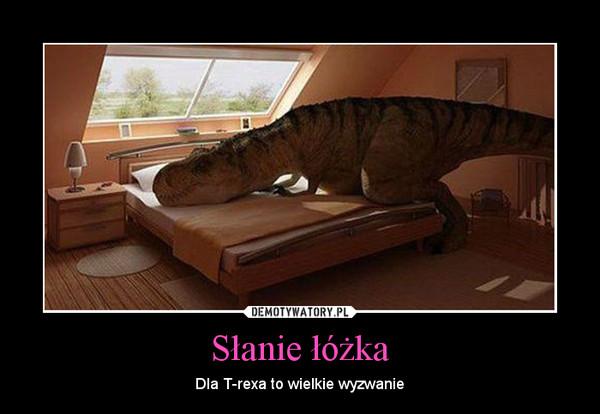 Słanie łóżka – Dla T-rexa to wielkie wyzwanie