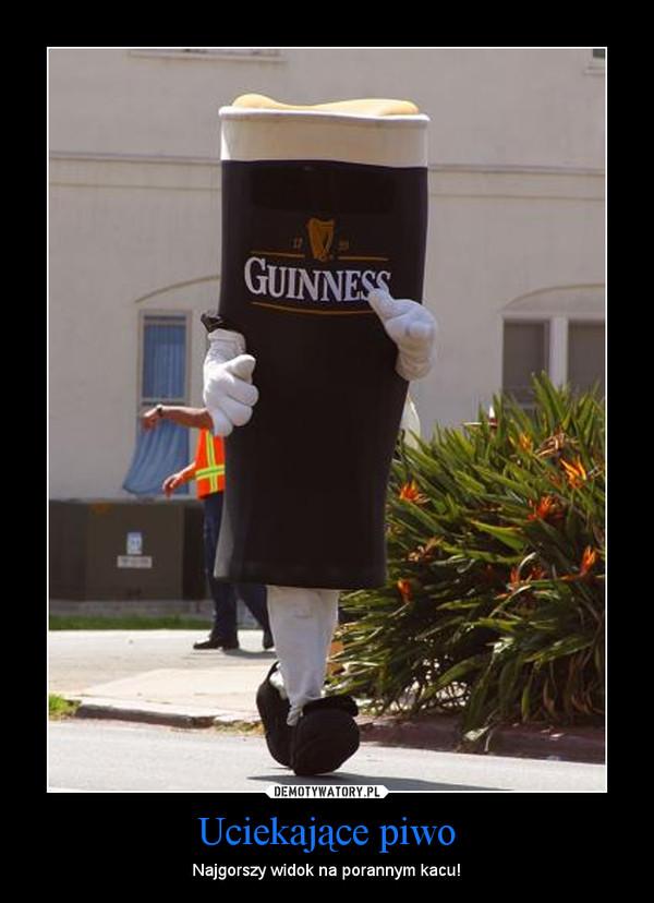 Uciekające piwo – Najgorszy widok na porannym kacu!