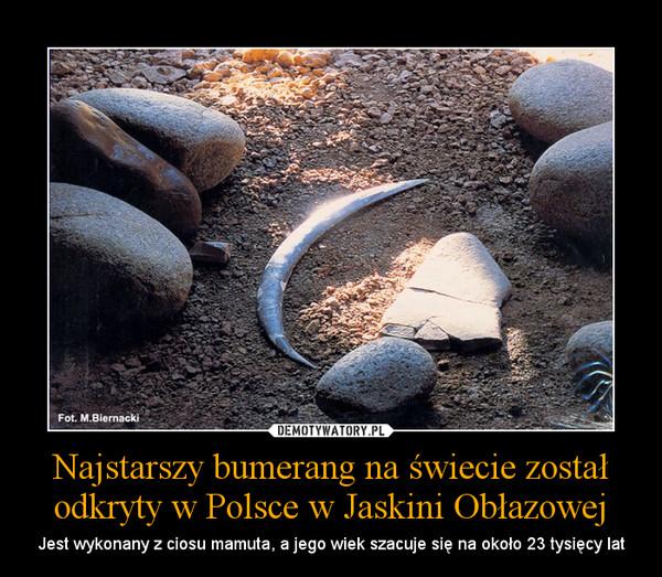 Najstarszy bumerang na świecie został odkryty w Polsce w Jaskini Obłazowej – Jest wykonany z ciosu mamuta, a jego wiek szacuje się na około 23 tysięcy lat