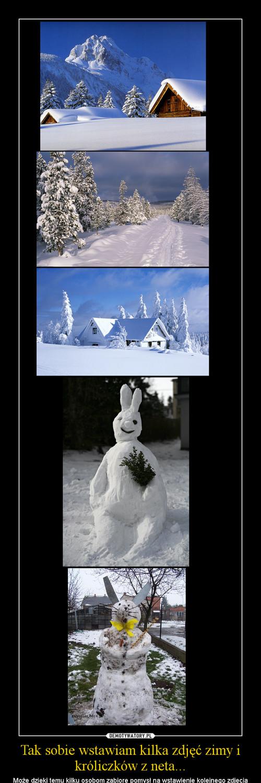 Tak sobie wstawiam kilka zdjęć zimy i króliczków z neta...