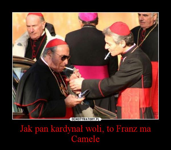 Jak pan kardynał woli, to Franz ma Camele –