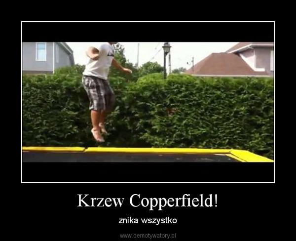 Krzew Copperfield! – znika wszystko