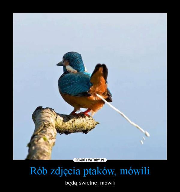 Rób zdjęcia ptaków, mówili – będą świetne, mówili