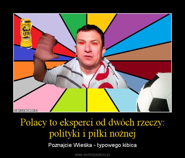 Polacy to eksperci od dwóch rzeczy: polityki i piłki nożnej – Poznajcie Wieśka - typowego kibica