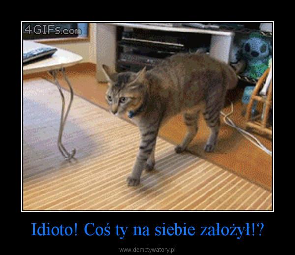 Idioto! Coś ty na siebie założył!? –