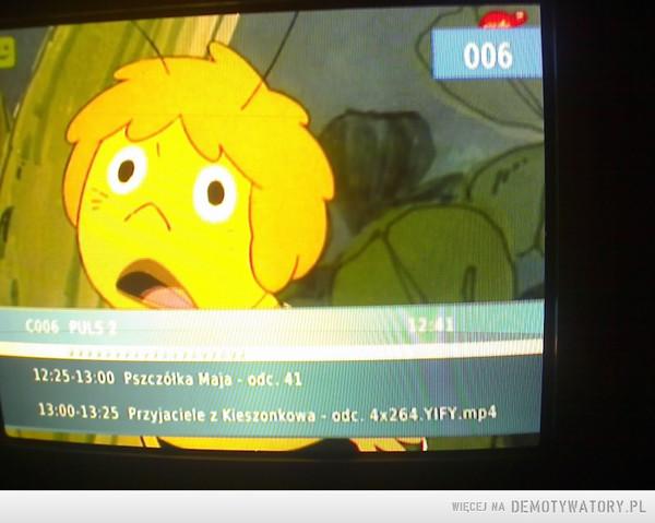 Torrenty w TV –