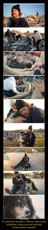 Po przejściu tornada w Illnois, mężczyzna odnajduje swego psa pod gruzami – Prawdziwe szczęście w nieszczęściu