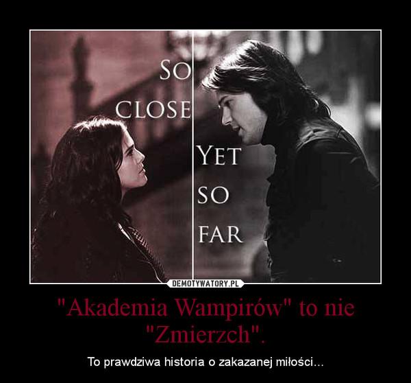 """""""Akademia Wampirów"""" to nie """"Zmierzch"""". – To prawdziwa historia o zakazanej miłości..."""
