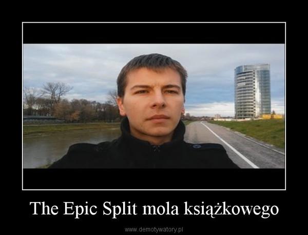 The Epic Split mola książkowego –