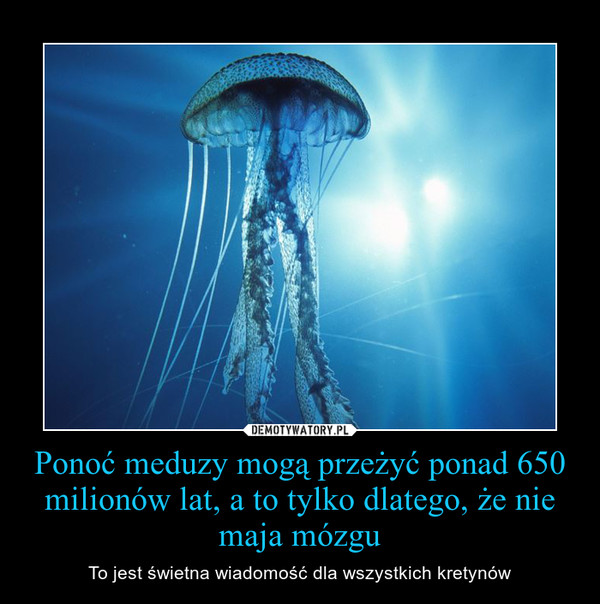 [Obrazek: 1388967432_duyous_600.jpg]