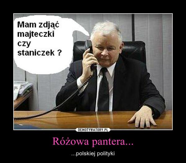 Różowa pantera... – ...polskiej polityki