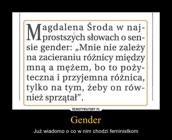 Gender – Już wiadomo o co w nim chodzi feministkom