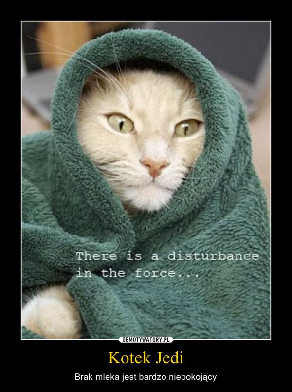 Kotek Jedi – Brak mleka jest bardzo niepokojący
