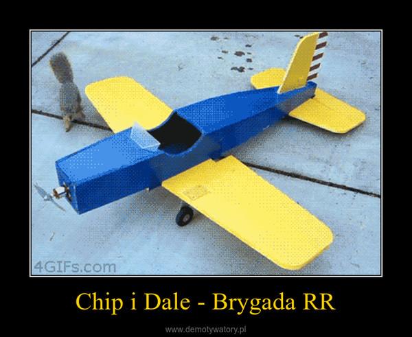 Chip i Dale - Brygada RR –