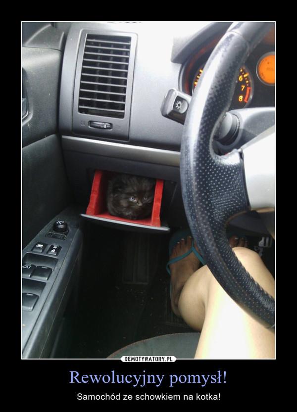 Rewolucyjny pomysł! – Samochód ze schowkiem na kotka!