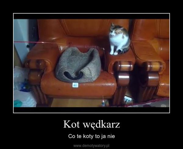 Kot wędkarz – Co te koty to ja nie
