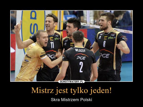 Mistrz jest tylko jeden! – Skra Mistrzem Polski