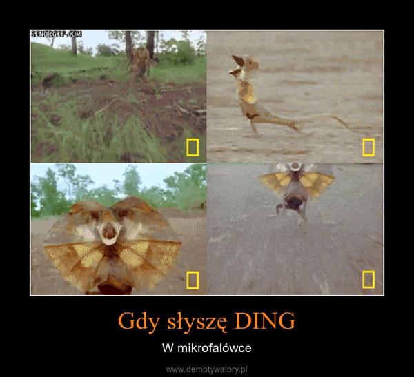 Gdy słyszę DING – W mikrofalówce