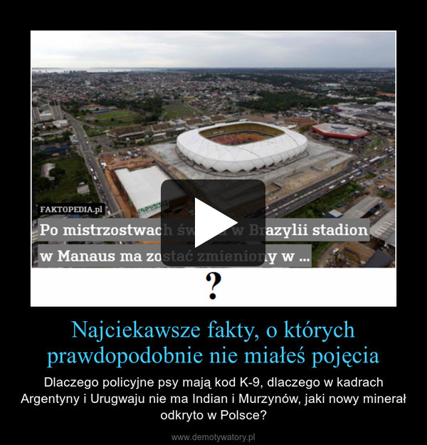 Najciekawsze fakty, o którychprawdopodobnie nie miałeś pojęcia – Dlaczego policyjne psy mają kod K-9, dlaczego w kadrach Argentyny i Urugwaju nie ma Indian i Murzynów, jaki nowy minerał odkryto w Polsce?