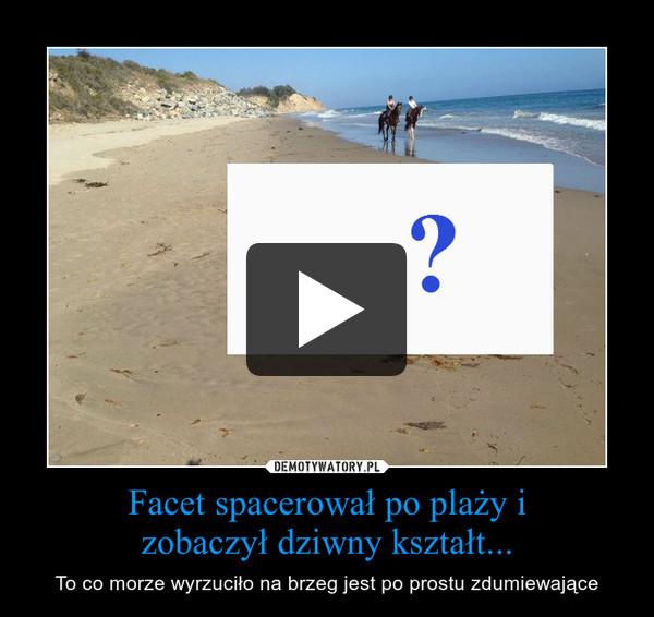 Facet spacerował po plaży izobaczył dziwny kształt... – To co morze wyrzuciło na brzeg jest po prostu zdumiewające