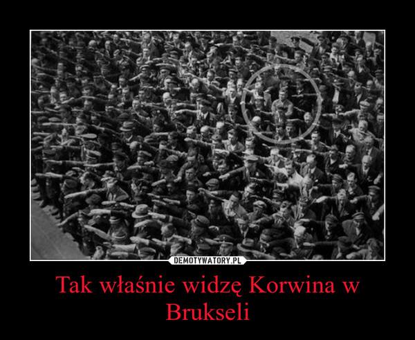 Tak właśnie widzę Korwina w Brukseli –
