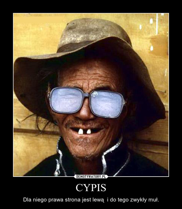 CYPIS – Dla niego prawa strona jest lewą  i do tego zwykły muł.
