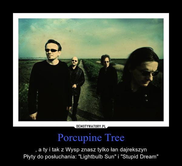 """Porcupine Tree – , a ty i tak z Wysp znasz tylko łan dajrekszynPłyty do posłuchania: """"Lightbulb Sun"""" i """"Stupid Dream"""""""