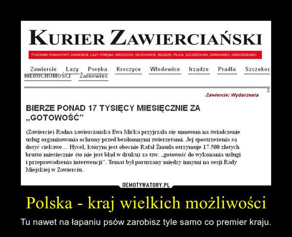 Polska - kraj wielkich możliwości – Tu nawet na łapaniu psów zarobisz tyle samo co premier kraju.