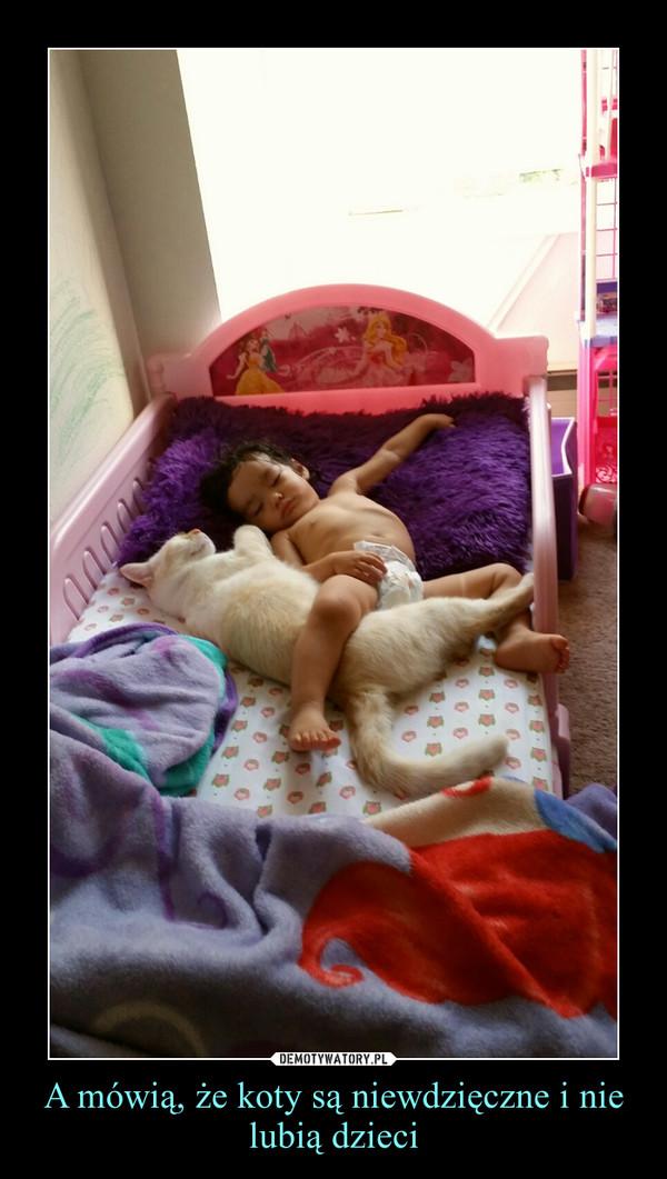 A mówią, że koty są niewdzięczne i nie lubią dzieci –