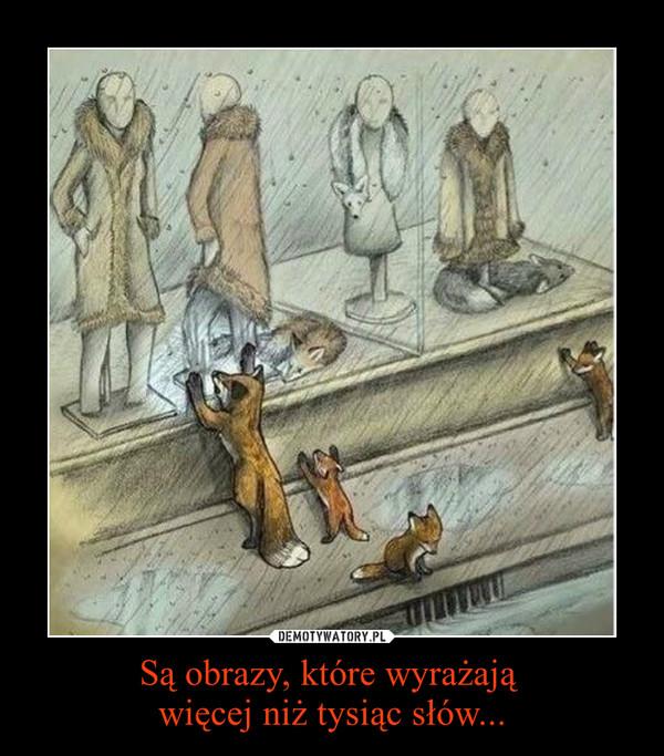 Są obrazy, które wyrażają  więcej niż tysiąc słów... –