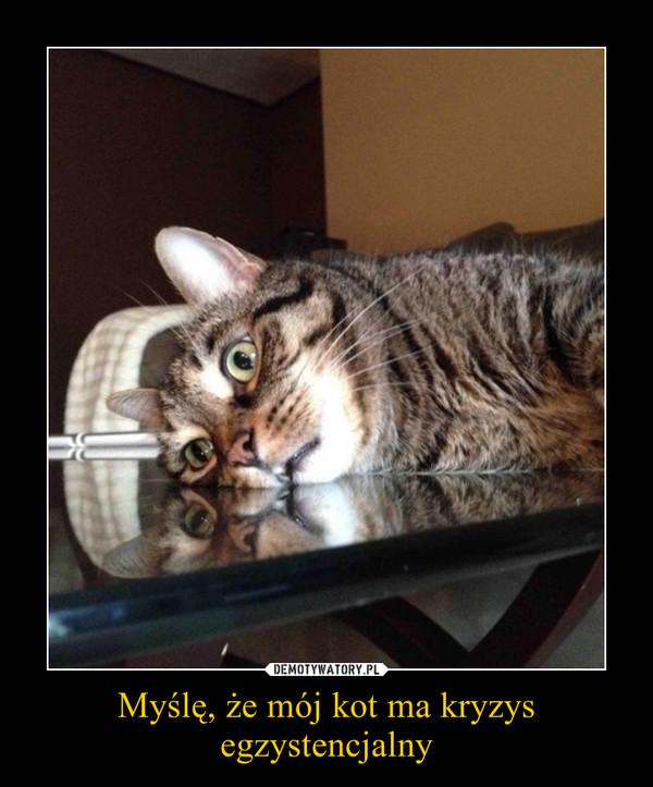 Myślę, że mój kot ma kryzys egzystencjalny –