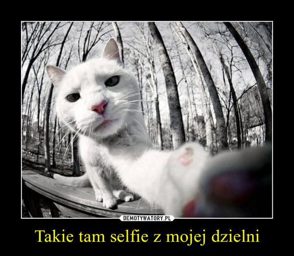 Takie tam selfie z mojej dzielni –