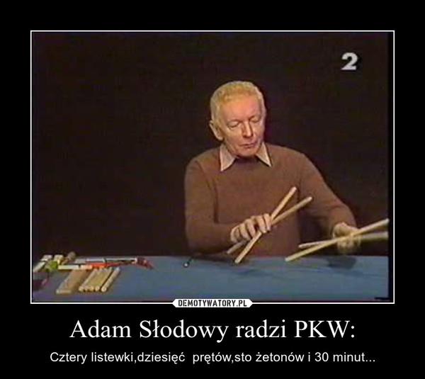 Adam Słodowy radzi PKW: – Cztery listewki,dziesięć  prętów,sto żetonów i 30 minut...