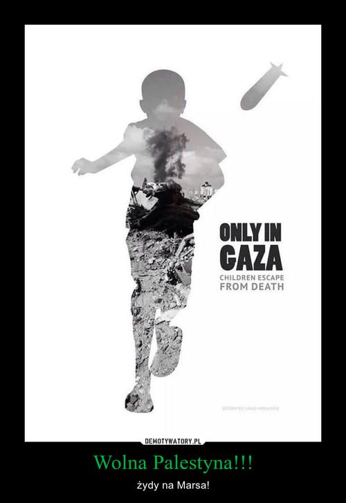 Wolna Palestyna!!!