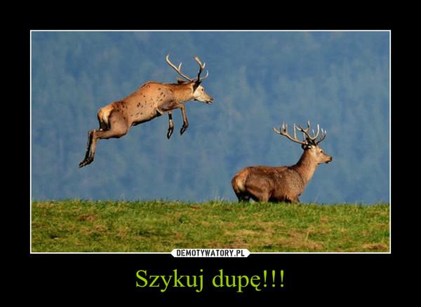Szykuj dupę!!! –
